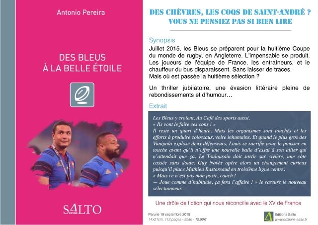 Salon_Des Bleus_Affiche (1)